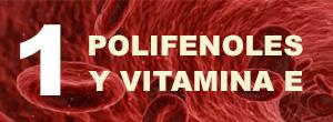 Icono número 1, polifenoles y vitamina E, con una imagen de microscopio de la sangre